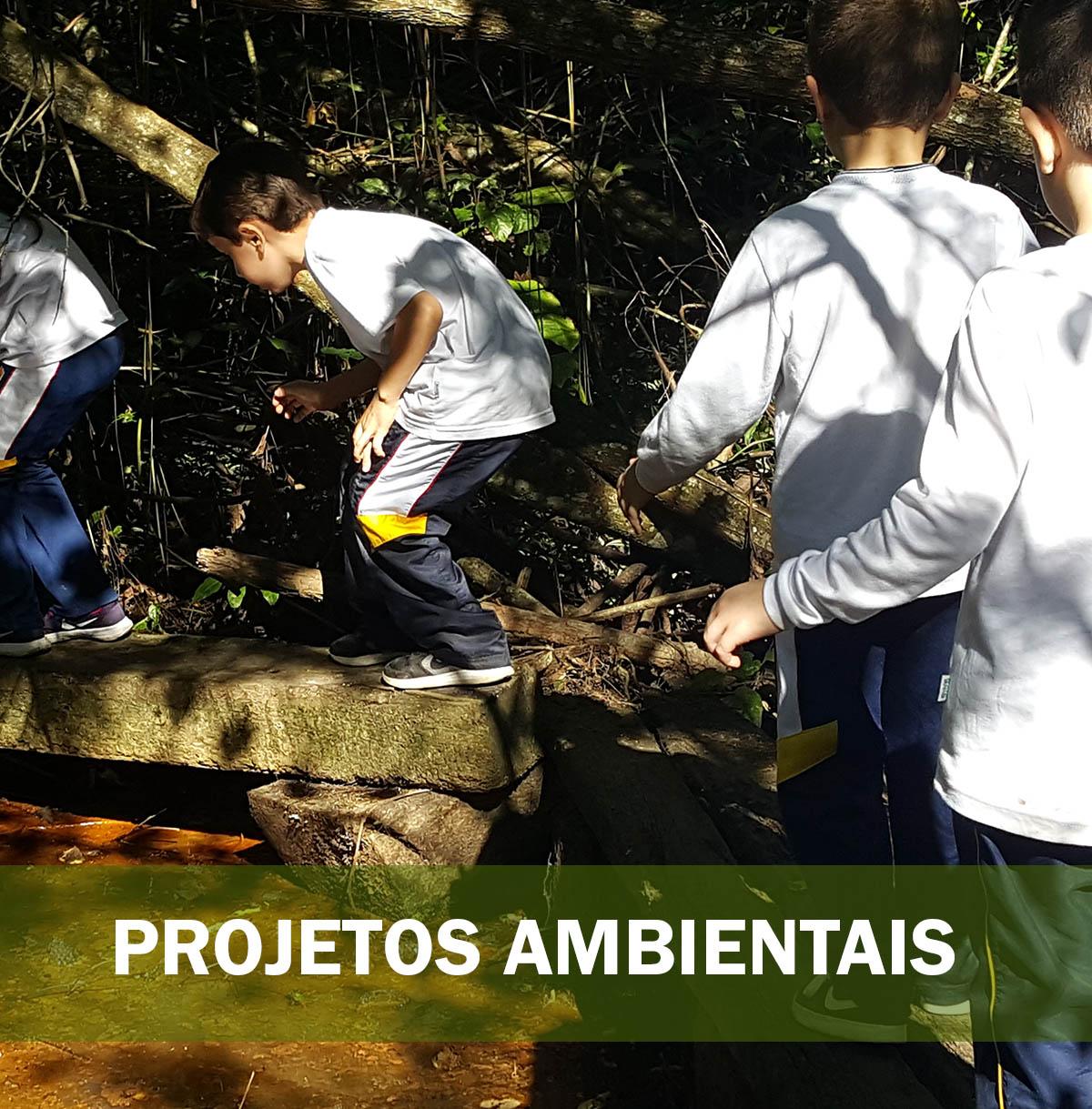 PROJETOS AMBIENTAIS palestra com animais silvestres e exóticos 1