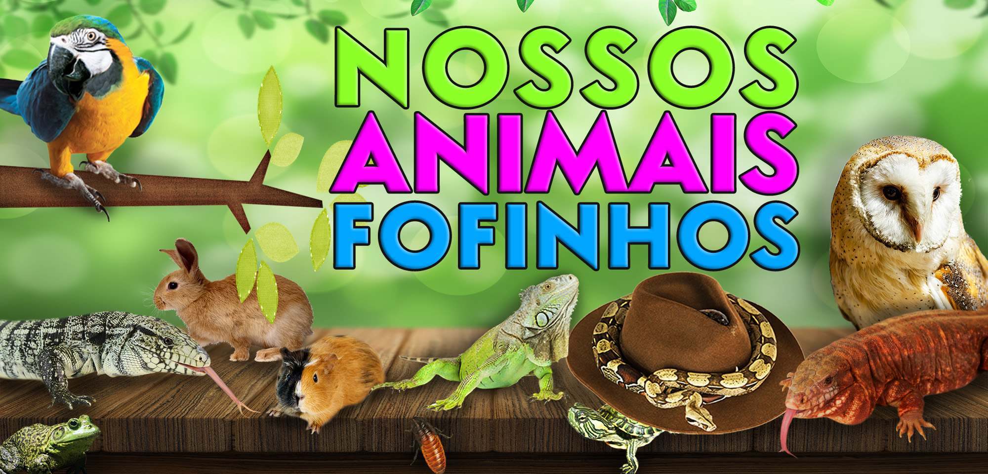 topo pagina nossos animais